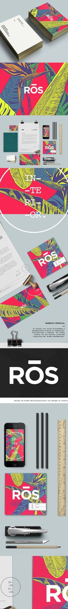 Identity / Ros / brand / brand board / mock up / color / pattern / plant texture