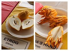 Citron - Buddha's hand - Wikipedia, the free encyclopedia Buddha's Hand, Hands, Fruit, Martial Arts, Food, Magazine, Essen, Magazines, Meals