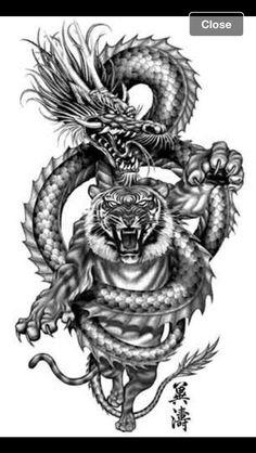 - – - -- - – - - Dragon Tattoo Ideas And Meaning-Chinese and Japanese Dragon Tattoo History And Meaning Tiger Drachen Kampf Tattoo Không có mô tả ảnh. Draco Vs Great White Tiger Photo by Dragon Tiger Tattoo, Dragon Tattoo For Women, Dragon Sleeve Tattoos, Japanese Dragon Tattoos, Dragon Tattoo Designs, Lion Tattoo, Tattoo Designs Men, Tatoo Art, Tattoo Drawings