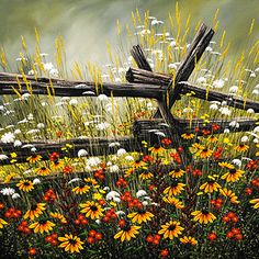 Cedar Rail and Daisies - original painting by Jordan Hicks at Crescent Hill Gallery