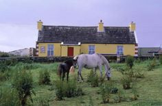 Solid-Faced Canvas Print Wall Art Print entitled Rural home, Doolin, County Clare, Ireland International Jobs, County Clare, Good Job, Exotic, Horses, Travel, Sample Resume, Ireland, People