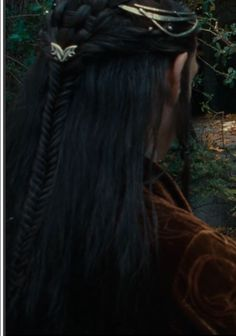 Elrond Hairstyle