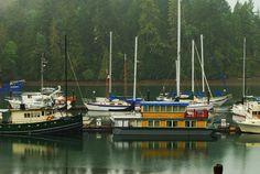 Jarrell Cove Marina in Hood Canal  #wildsideWA #explorehoodcanal #hoodcanal #OlympicPeninsula #salishsea