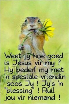 Weet jy?...... Christian Messages, Christian Quotes, Prayer Verses, Bible Verses, Beautiful Quotes Inspirational, Birthday Verses For Cards, Afrikaanse Quotes, Special Words, Morning Greeting