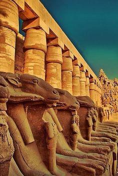 Ram Headed Sphinxes - Luxor