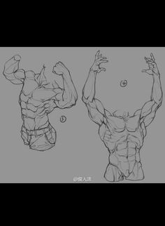 Body Reference Drawing, Anatomy Reference, Art Reference Poses, Art Poses, Drawing Poses, Human Anatomy Drawing, Anatomy Sketches, Anatomy For Artists, Poses References