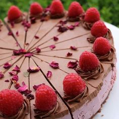 Treat yo self... RAW RASPBERRY CHEESCAKE with CHOCOLATE FROSTING     latest raw vegan creation available now @fishtalescafe    Have you thought about providing an alternative treat for Christmas Day?  Anyone in the family that is vegan paleo gluten and dairy free? Or just passionate about their health?  Living Food Life desserts are all of the above raw and organic... Handmade with love. Taking orders for your special occasions and delivered to your doorstep   For more information and a…