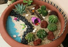 My beach themed mini cacti garden