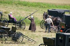 Amish-horse-and-buggy-hitching-up.jpg (600×400)