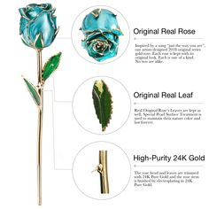 DeFaith Gold Dipped Real Rose, Forever Gifts for Her Anniversary Valentine鈥檚 Day Christmas, Natural Shape and Attractive Luster, Teal Blue with Moon Stand,