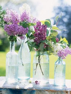 Lilacs, spring's favorite perfume.