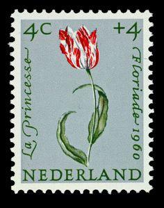 Postzegel Nederland 1960, Zomerpostzegels, tulp La Princesse
