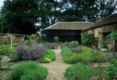 Like the catmint/nepeta on the left side ... From Congham Hall