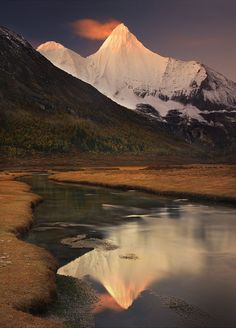 the-narwhal-orchestra:    Wisdom and Reflection by *michaelanderson