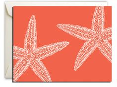 Starfish Notecards – Fuller Collection