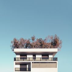 Unknown Geometries Photography-5