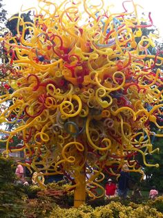 chihuly exhibit - Google Search
