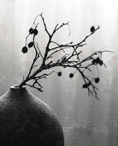 #artistic #still #life #photography • photo: *** | photographer: Наташа Андреева | WWW.PHOTODOM.COM
