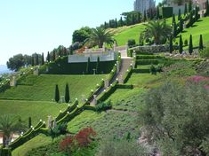 http://upload.wikimedia.org/wikipedia/commons/1/1a/Israel_-_Haifa_-_Bahai_Gardens_002.jpg