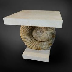 Ammonite Fossil Table http://www.loveantiques.com/ammonite-fossil-table-4147