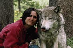 This wolf documentary debunks all of the malicious myths and negative publicity conjured up against these majestic animals.  Fear-mongering about wolves is not only done out of ignorance but with a monetary agenda (state revenue and political favors), AND to benefit those who get a psychological thrill out of dominating, conquering, and having a trophy of one of nature's top predators.    click on, and share! Many howls!