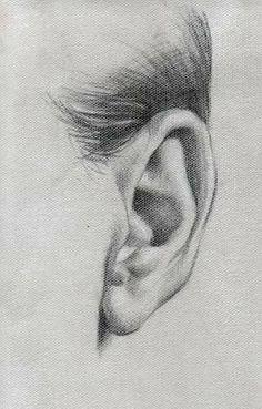 Pencil drawing of ear drawings Source by ndmrl Pencil Art Drawings, Realistic Drawings, Art Drawings Sketches, Pencil Sketching, Charcoal Drawings, Art Illustrations, Art Du Croquis, Arte Sketchbook, Anatomy Art