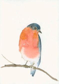 Watercolor Original Artwork of a blue and orange bird. Painted on heavyweight and acid-free Hahnemuehle Torchon paper. The paper has quite a