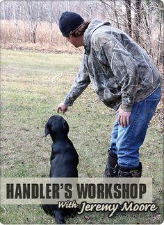 Dog Bone Shed Dog Training Workshop