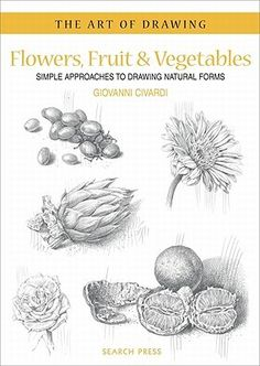 Lot's of really interesting material on botanical observation & illustration for plant geeks and  non-geeks alike.