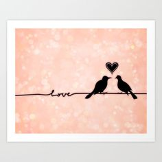 Birds on a wire Love