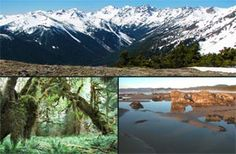 Olympic National Park. the more i find out about it, the more i know i have to visit it!