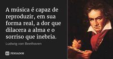 A música é capaz de reproduzir, em sua forma real, a dor que dilacera a alma e o sorriso que inebria. — Ludwig van Beethoven