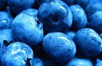 meer fruit consumeren