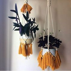 "2,801 mentions J'aime, 80 commentaires - Suzy C  (@momagency) sur Instagram : ""Macrame plant hangers need to be a staple in any boho room. Hung in a cluster or even on its…"""