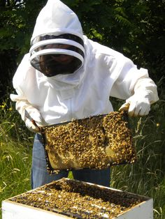 Bee keeping and honey; I read somewhere that honey is the only food that never goes bad. They have found in in the tombs in Egypt and it is still edible.