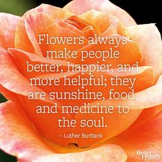 """""""Flowers always make people better, happier, and more helpful; they are sunshine, food, and medicine to the soul.""""-Luther Burbank Find more flower quotes here: http://www.bhg.com/gardening/flowers/flower-quotes/?socsrc=bhgpin042114flowerquotesoul"""