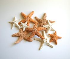 Edible Starfish / Edible Echinoderms / Edible Sea Stars - 16 - cake decoration or stand alone decorative sweet