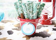 Western Cowboy/cowgirl party ideas/inspiration ~ Party Frosting