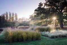 Berkshire — Dan Pearson Studio Beautiful Landscapes, Beautiful Gardens, Landscape Design, Garden Design, Country Life, Country Roads, Folly Farm, Dan Pearson, Garden Landscaping