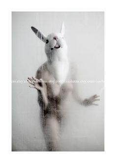White Rabbit - 5x7. $10.00, via Etsy.