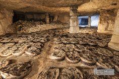 Ancienne installation de culture de champignon sur sacs à Conflans
