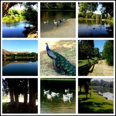 Hart Memorial Park, Bakersfield, CA