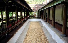 Kalari Kovilakom Kollengod, Palakkad is one of the authentic Ayurveda center in Kerala, India Kerala Architecture, Vernacular Architecture, Kerala India, South India, Kerala Homes, Karnataka, House Decorations, Courtyards, Incredible India