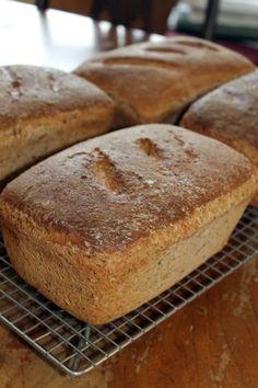Marys Little Corner In The Woods: My Soaked Grain Bread Recipe