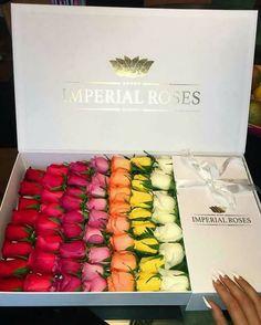 Regalo de flores rosas