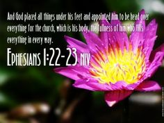 And God placed all things under his feet and appointed him to be head over everything for the church, which is his body, the fullness of him who fills everything in every way.    -Ephesian 1:22-23