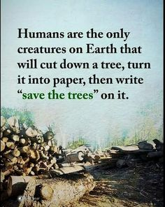 New mother nature quotes sad Ideas - naturaleza Save Nature Quotes, Mother Nature Quotes, Quotes About Nature, Beauty In Nature Quotes, Quotes About Trees, Green Nature Quotes, Human Nature Quotes, Angst Quotes, Now Quotes