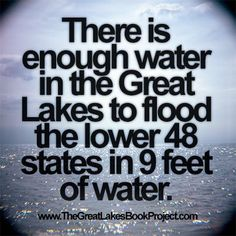 There is enough water in the Great Lakes to flood the lower 48 states in 9 feet of water. Michigan Facts, State Of Michigan, Detroit Michigan, Northern Michigan, Lake Michigan, Wisconsin, Michigan Quotes, The More You Know, Good To Know