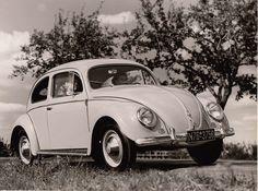 Volkswagen - 1952