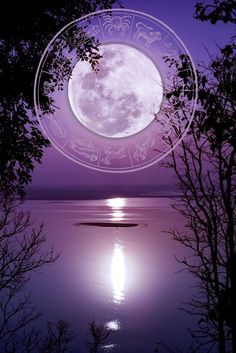 The end of Mercury retrograde, beginning of Cancer season and a Full Moon make this a very exciting week. Click through for your weekly horoscope. Weekly Horoscope, Your Horoscope, Mercury Retrograde, Full Moon, Opportunity, Bring It On, Seasons, Life